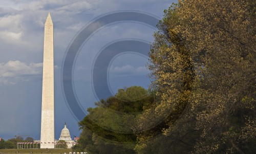 Washington Monument und Capitol