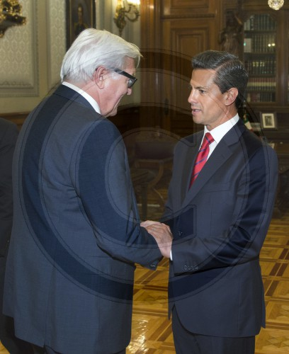 German Foreign Minister Travels Mexico