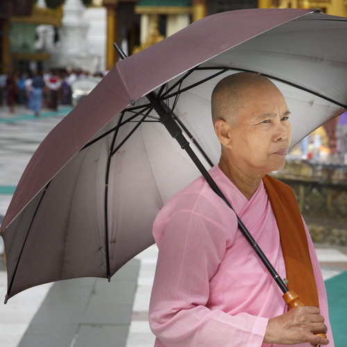 Nonne in der Shwedagon Pagode in Rangun