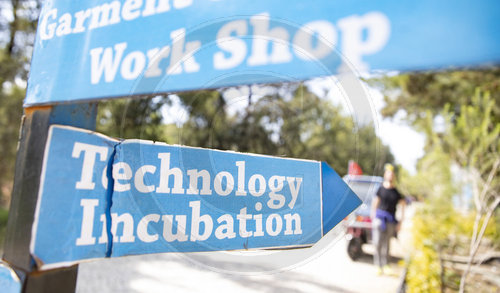 Technology Incubation