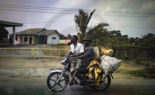 Transport von Tier-Resten in Port Harcourt
